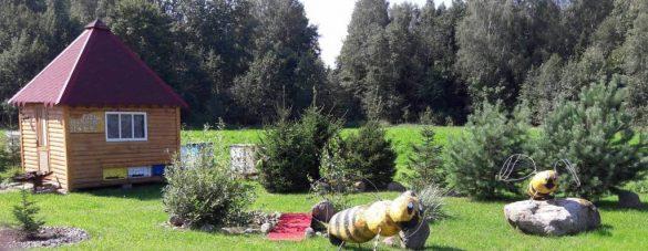 Bičių terapija